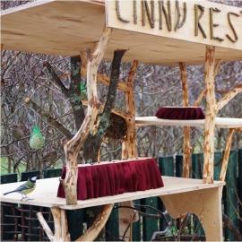 Põlvamaal hoolitakse talvel ka kõige väiksemate külaliste kõhutäie eest